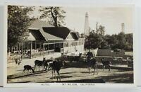 RPPC Mt Wilson California Hotel Feeding Deer Postcard Q1