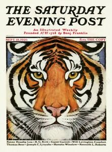 Saturday Evening Post September 18 1926 cover GREAT tiger art new poster 18x24