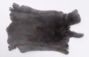 Rex Rabbit:  Natural Lilac : Size AA (142-13-G1363)