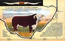 Douglas AZ Blue Ribbon Bull of F. C. Kimble's Stock Ranch Linen Postcard