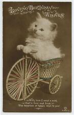 1910s Cute Hells Angel CAT on WICKER BIKE British photo postcard