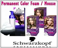 Schwarzkopf PERFECT MOUSSE Hair Permanent  Colour Different Shades Ammonia Free