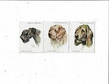 CIGARETTE CARDS JOHN PLAYERS THREE CARDS FROM 1928 2nd SERIES 0F 20