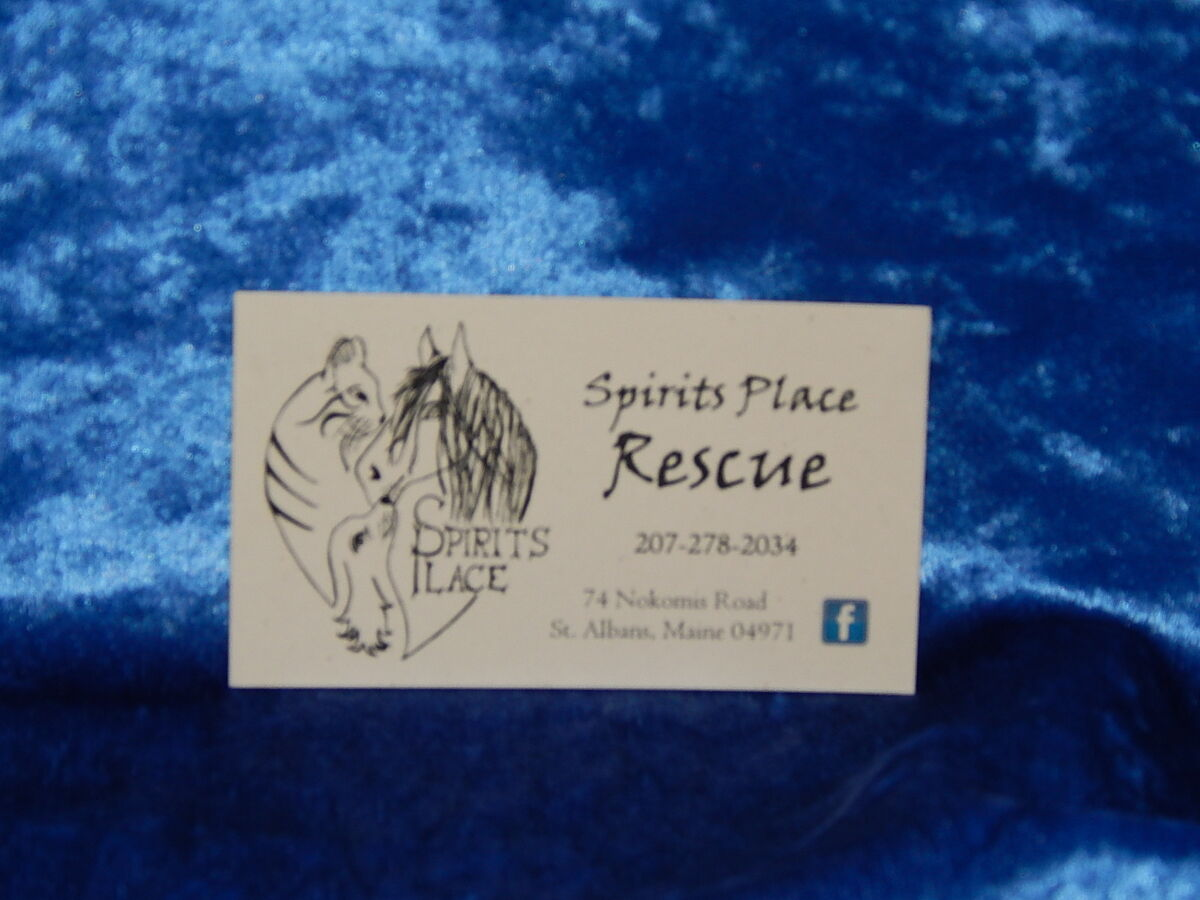 Spirits Place Rescue