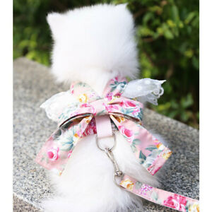 Dog Cat Lace Bow Harness Leash Puppy Kitten Shirt Costume for Pomeranian Maltese