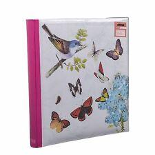 """5 X 7"""" Grandes Mariposa Crema Memo álbum deVOLVO2402.3puertasV-Correa 80-8494cb"""