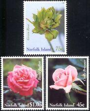 Norfolk Island 1999 le rose/fiori/piante natura/Orticoltura Set 3v (s3061)