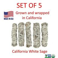 "White Sage Smudge Stick 4"" SET OF 5 Bundle (House Cleansing Energy Clearing)"