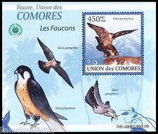 Peregrine falcon, Duck Hawk, Birds of Prey, Raptors, Comoros MNH Sheet (I200)