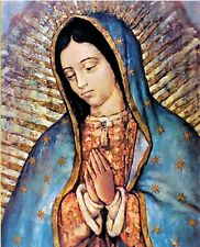 Our Lady of Guadalupe 8x10 Color Print Catholic Faith Imported From Italy