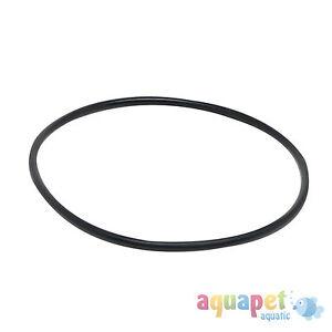 Fluval 104/105/106/204/205/206/107/207 External Filter Motor Seal Ring