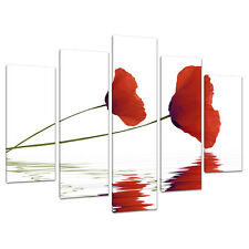 Set of 5 Part Red Canvas Wall Art Pictures Poppy Poppies Prints 5029