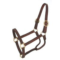 Tough-1 Royal King Leather Track Halter with Triple Stitched Cheeks