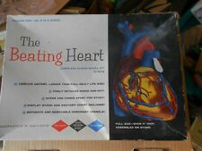Vintage 1961 The Beating Heart Life Size Model Science Kit Rare