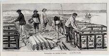 1892  --  ARCACHON  FORMATION DES RUCHES A TUILES C283