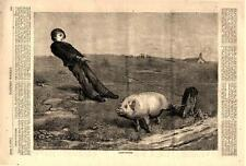 Cross Purposes  -  There is something in the nature of a Pig    -  1876