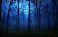 Framed Print - Misty Blue Moon Light in a Spooky Forest (Gothic Picture Poster)