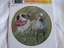 1 autocollant - motif chien  BOULEDOGUE AMERICAIN