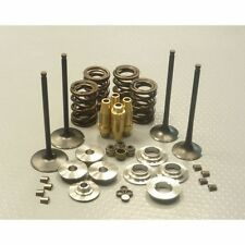 5mm Complete Valve Set Kit   for  GM SPEEDWAY ENGINE