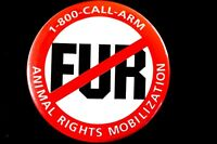 NO FUR - ANIMAL RIGHTS MOB. 1990'S - ORIGINAL LARGE  PINBACK  SCARCE
