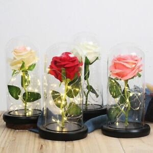 LED Night Light Glass Dome Artificial Flower Wedding Party Valentine's Christmas