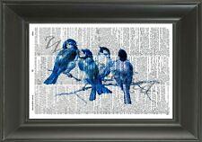 ORIGINAL Blue Birds Vintage Dictionary Page Art Print - Art Illustration NO.550D