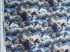 VIP Exclusive Loon Lake  quilt sew fabric 45528 K