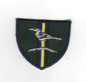 BRITISH ARMY JUNGLE WARFARE SCHOOL BADGE BRUNEI - NEW