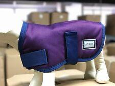 AXIOM 1800D PURPLE WATERPROOF WARM DOG COAT  - 75cm