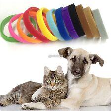 12Newborn Kitten & Puppy Reusable Adjustable Washable Collars Whelping B98B