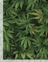 Pot Weed Adult Leaves Marijuana C3819 Timeless Treasures durable Cotton fabric