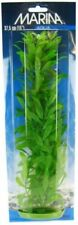 "New listing Lm Marina Hygrophila Plant 15"" Tall"