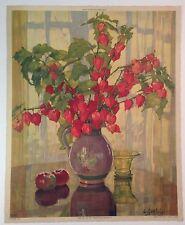 Vintage Anna Sophie Gasteiger lithograph Cape Gooseberry floral still life