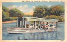 FEEDING FISH GLASS BOTTOM BOAT SILVER SPRINGS FLORIDA POSTCARD (c. 1940s)