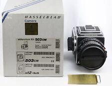 Hasselblad 503CW Millenium + 80mm f2.8 CFE T * 1:2 .8/80 + Acute Matte D 503 CW