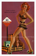 Pin Up Girl Poster 11x17 Mutoscope Card lingerie nylons hitchhiker bad girl