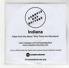 (GE863) Cymbals Eat Guitars, Indiana - 2009 DJ CD