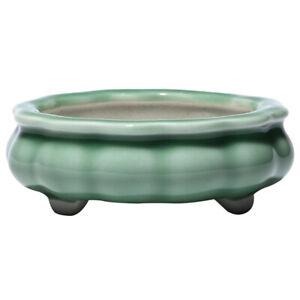 Mini Celadon Ligh Jade Bonsai Pot Ceramic Glazed Pots Oval Shohin 10.7 x 3.6 cm