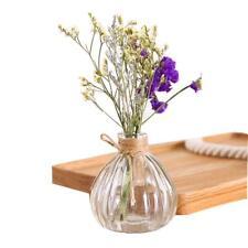 Glass Decorative Flower Vase Mini Bottle Vintage Style Home Tabletop Accessories