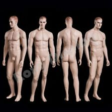 Realistic Male Mannequin With Molded Hair Mz Wen5