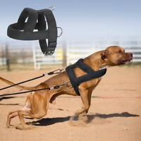 Dog Weight Pulling Harness Heavy Duty Training Large Breed Pitbull Padded Vest