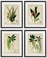 Vintage Botanical Floral No. 10 Art Home Wall Art Print Set of 4 Prints UNFRAMED