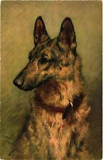 Dogs, German Shepherd, Old Postcard