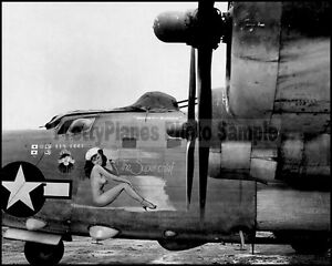 WW2 PB4Y Privateer (B-24 Variant) Super-Chief Nose Art 8x10 Aircraft Photos