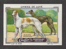 1931 France Nestle Cailler Kohler Dog Card Greyhound Russian Wolfhound Borzoi
