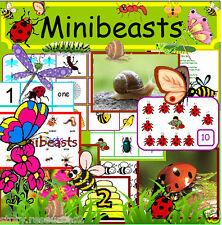 Mini bestias primeros años recursos didácticos en CD eyfs, minibeasts, cuidadora