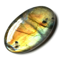 Cts. 41.15 Natural Labradorite Multi Fire Cab Oval Cabochon Loose Gemstone