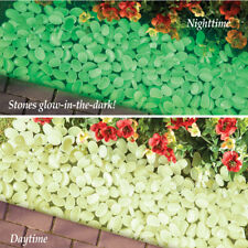 100 Pc. Glow-In-The-Dark Stone Pebbles Garden Border Edging