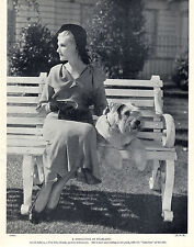 SCHNAUZER FILM STAR AND NAMED CHAMPION DOG OLD ORIGINAL DOG PRINT FROM 1934