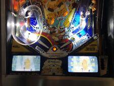 White Water WW Pinball Machine Glowing Instruction Card Kit EL Panel WILLIAMS
